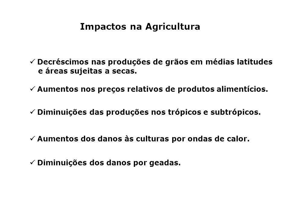 Impactos na Agricultura Decréscimos nas produções de grãos em médias latitudes e áreas sujeitas a secas. Aumentos nos preços relativos de produtos ali