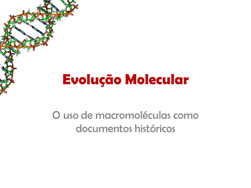 Evolução Molecular O uso de macromoléculas como documentos históricos