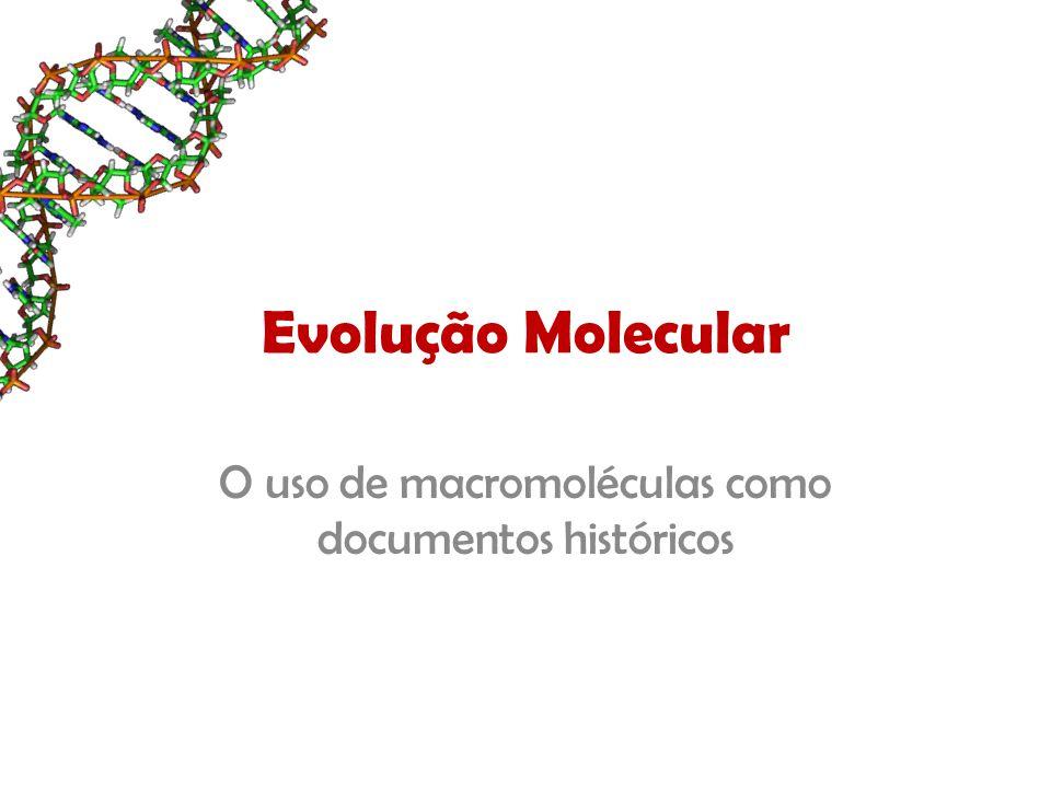 Filogenia Molecular Propriamente dita...