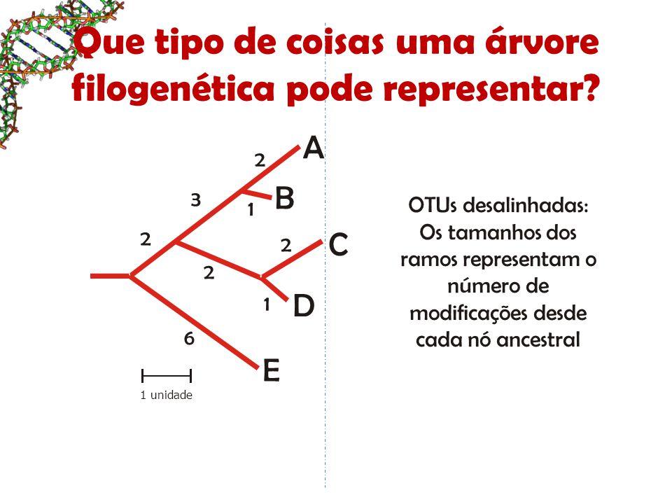 B D E C A 1 unidade 2 1 1 6 2 2 3 2 Que tipo de coisas uma árvore filogenética pode representar? OTUs desalinhadas: Os tamanhos dos ramos representam