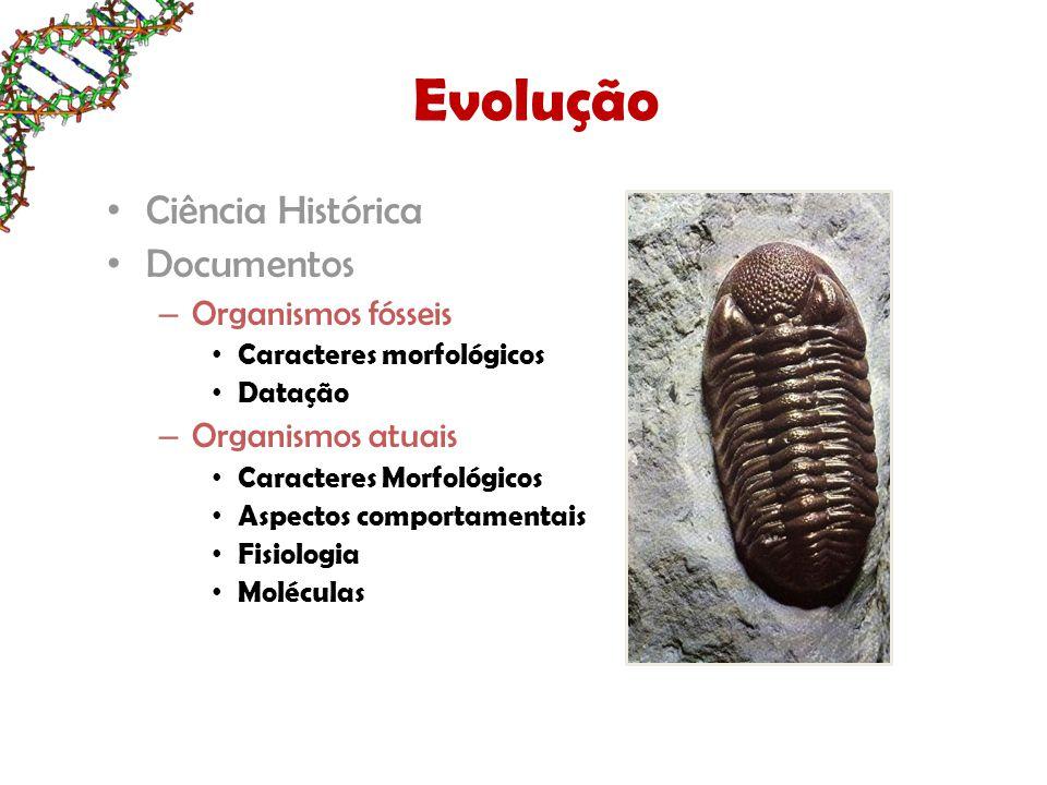 Evolução Ciência Histórica Documentos – Organismos fósseis Caracteres morfológicos Datação – Organismos atuais Caracteres Morfológicos Aspectos comportamentais Fisiologia Moléculas
