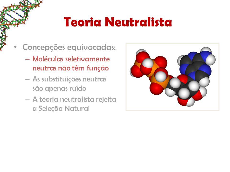 Concepções equivocadas: – Moléculas seletivamente neutras não têm função – As substituições neutras são apenas ruído – A teoria neutralista rejeita a Seleção Natural