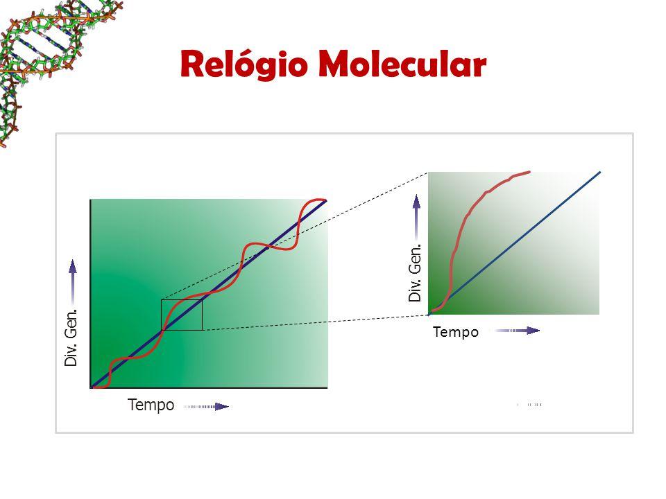 Relógio Molecular