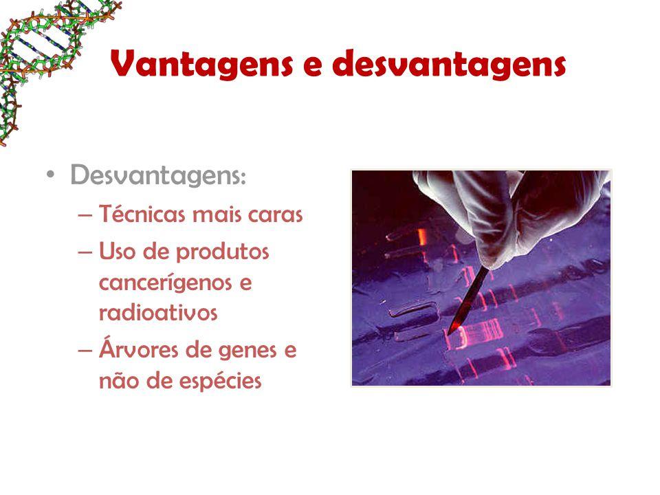 Vantagens e desvantagens Desvantagens: – Técnicas mais caras – Uso de produtos cancerígenos e radioativos – Árvores de genes e não de espécies