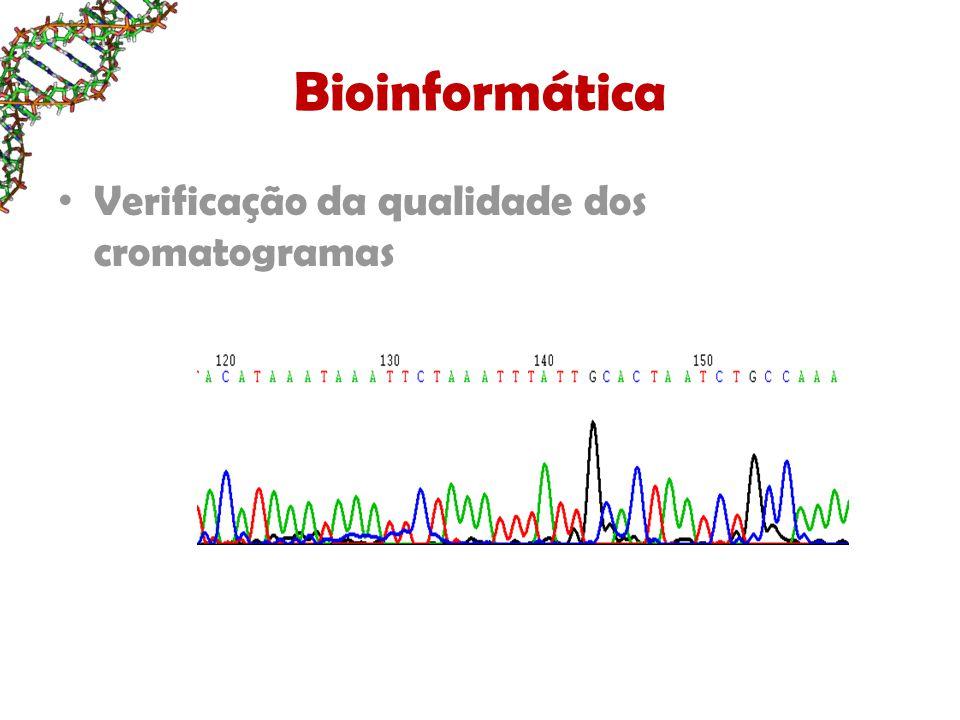 Bioinformática Verificação da qualidade dos cromatogramas
