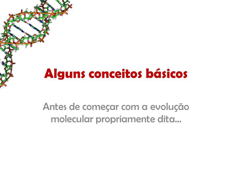 Duplicação Gênica Aumento da quantidade de genes nas células Freqüente formação de pseudo-genes – genes que foram desligados Leva à construção de árvores de genes, e não de espécies...