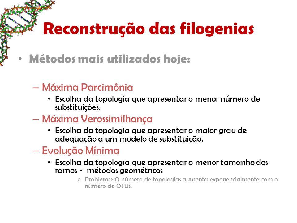 Reconstrução das filogenias Métodos mais utilizados hoje: – Máxima Parcimônia Escolha da topologia que apresentar o menor número de substituições.
