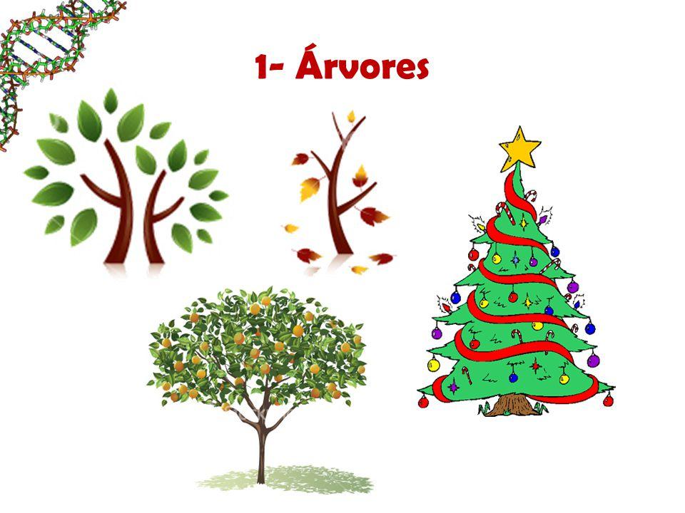 1- Árvores