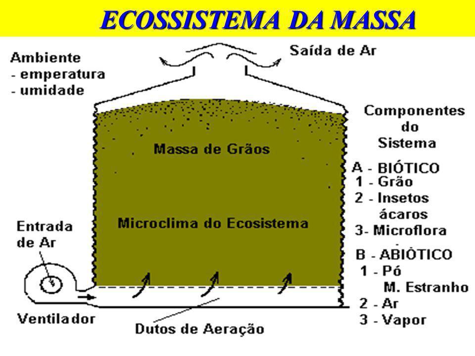 BENEFÍCIOS DA AERAÇÃO u Remove odores - Inseticidas -Devolve o cheiro característico dos grãos - Função da atividade biológica Õ Respiração Õ Desenvolvimento de microorganismos
