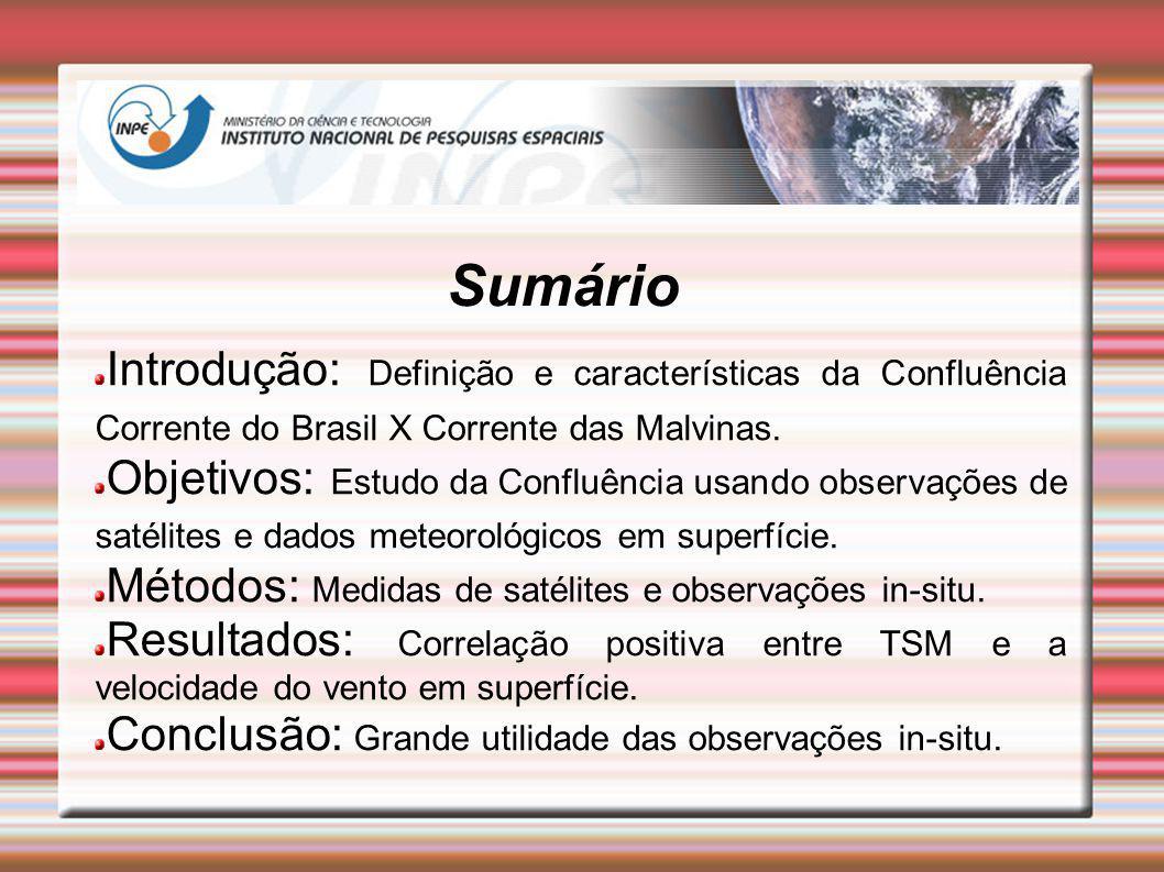 Sumário Introdução: Definição e características da Confluência Corrente do Brasil X Corrente das Malvinas. Objetivos: Estudo da Confluência usando obs