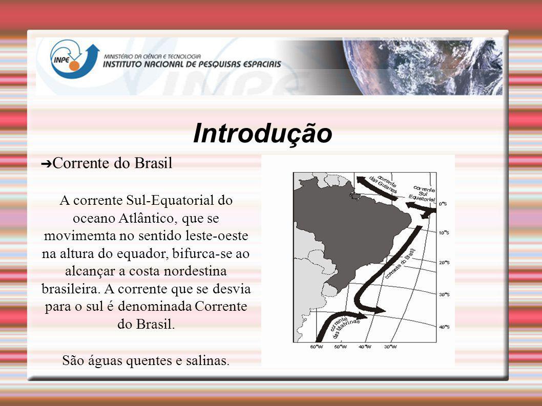 Introdução Corrente do Brasil A corrente Sul-Equatorial do oceano Atlântico, que se movimemta no sentido leste-oeste na altura do equador, bifurca-se