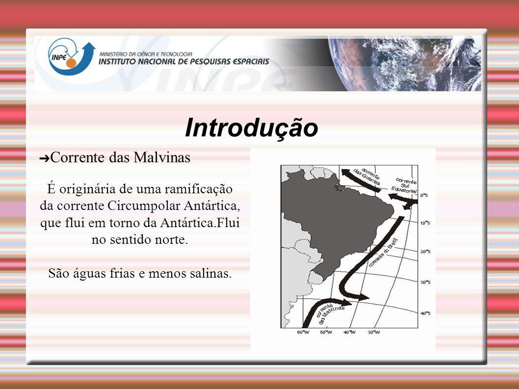 Introdução Corrente das Malvinas É originária de uma ramificação da corrente Circumpolar Antártica, que flui em torno da Antártica.Flui no sentido nor