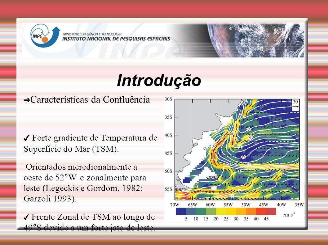 Introdução Características da Confluência Forte gradiente de Temperatura de Superfície do Mar (TSM). Orientados meredionalmente a oeste de 52°W e zona
