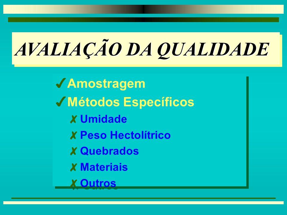 INTRODUÇÃOINTRODUÇÃO 3 3 Teor de Umidade 3 3 Secagem e Desidratação 4 4Redução da Qualidade (causas): 8 8Microrganismos, Insetos, Respiração e Danos Mecânicos 4 4Indicadores de Qualidade: 8 8Teor de Umidade, Densidade, Quebrados e Material Estranho 3 3 Teor de Umidade 3 3 Secagem e Desidratação 4 4Redução da Qualidade (causas): 8 8Microrganismos, Insetos, Respiração e Danos Mecânicos 4 4Indicadores de Qualidade: 8 8Teor de Umidade, Densidade, Quebrados e Material Estranho