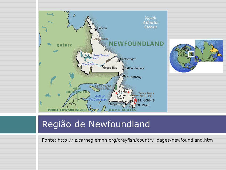 Região de Newfoundland Fonte: http://iz.carnegiemnh.org/crayfish/country_pages/newfoundland.htm