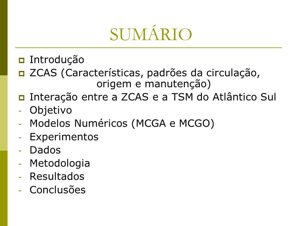 SUMÁRIO Introdução ZCAS (Características, padrões da circulação, origem e manutenção) Interação entre a ZCAS e a TSM do Atlântico Sul - Objetivo - Modelos Numéricos (MCGA e MCGO) - Experimentos - Dados - Metodologia - Resultados - Conclusões
