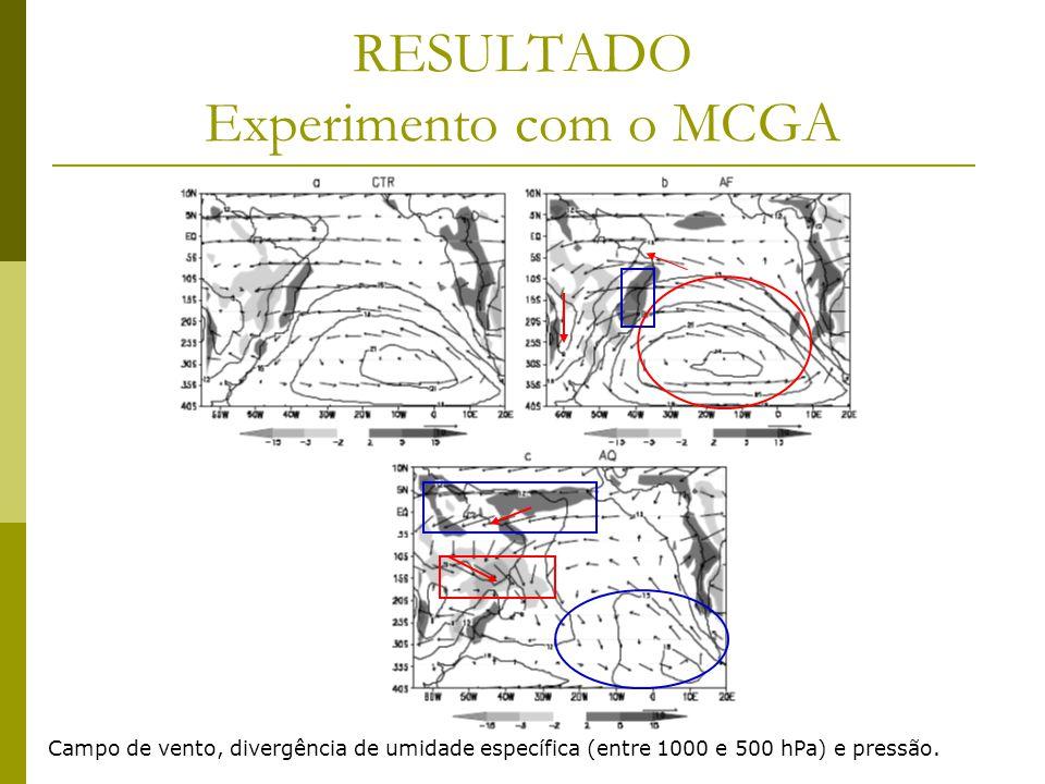 RESULTADO Experimento com o MCGA Campo de vento, divergência de umidade específica (entre 1000 e 500 hPa) e pressão.