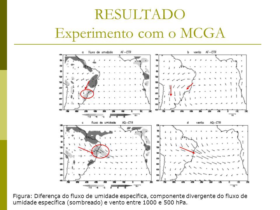 RESULTADO Experimento com o MCGA Figura: Diferença do fluxo de umidade específica, componente divergente do fluxo de umidade específica (sombreado) e vento entre 1000 e 500 hPa.