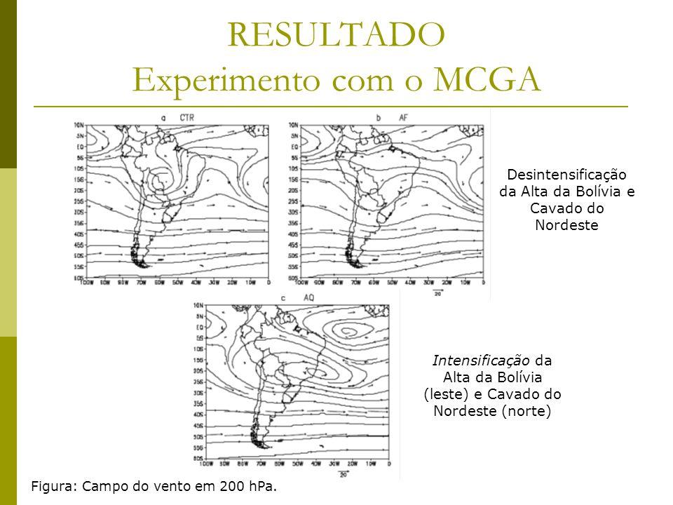 RESULTADO Experimento com o MCGA Figura: Campo do vento em 200 hPa.