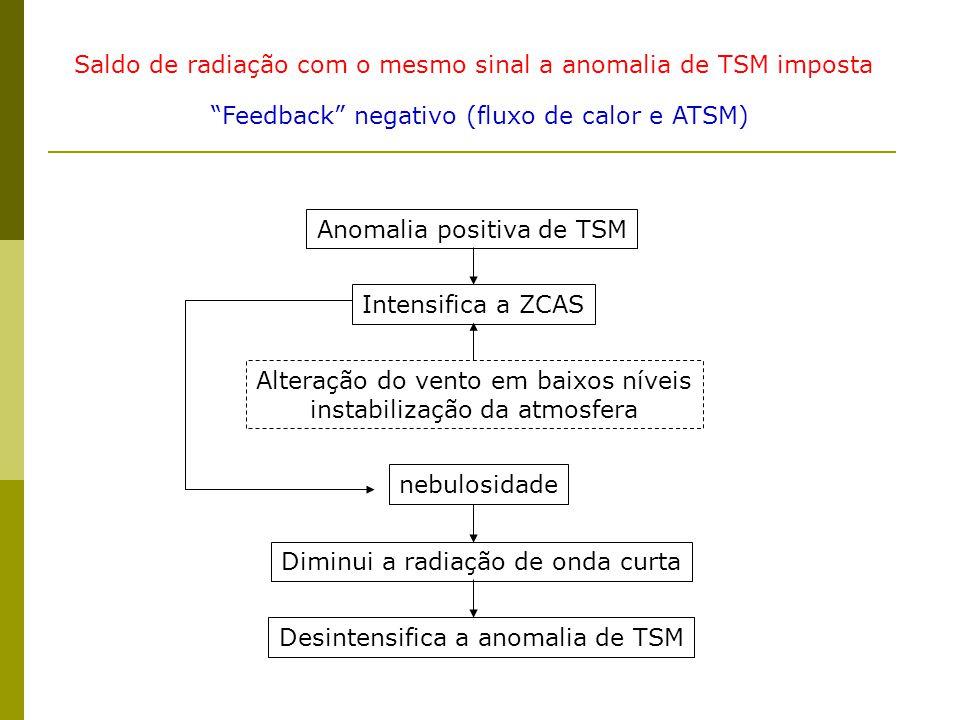Saldo de radiação com o mesmo sinal a anomalia de TSM imposta Feedback negativo (fluxo de calor e ATSM) Anomalia positiva de TSM Intensifica a ZCAS Alteração do vento em baixos níveis instabilização da atmosfera nebulosidade Diminui a radiação de onda curta Desintensifica a anomalia de TSM