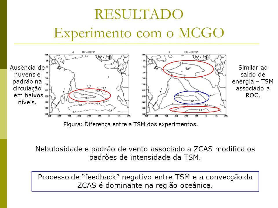 RESULTADO Experimento com o MCGO Figura: Diferença entre a TSM dos experimentos.