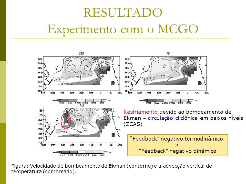 RESULTADO Experimento com o MCGO Figura: Velocidade de bombeamento de Ekman (contorno) e a advecção vertical de temperatura (sombreado).