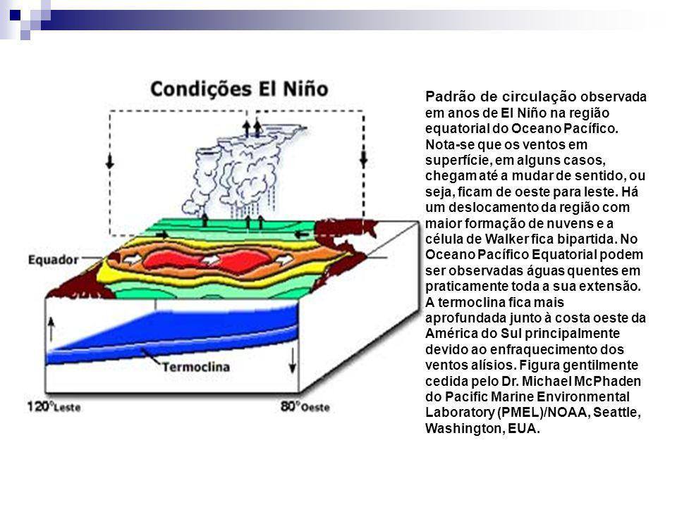 Padrão de circulação observada em anos de El Niño na região equatorial do Oceano Pacífico. Nota-se que os ventos em superfície, em alguns casos, chega