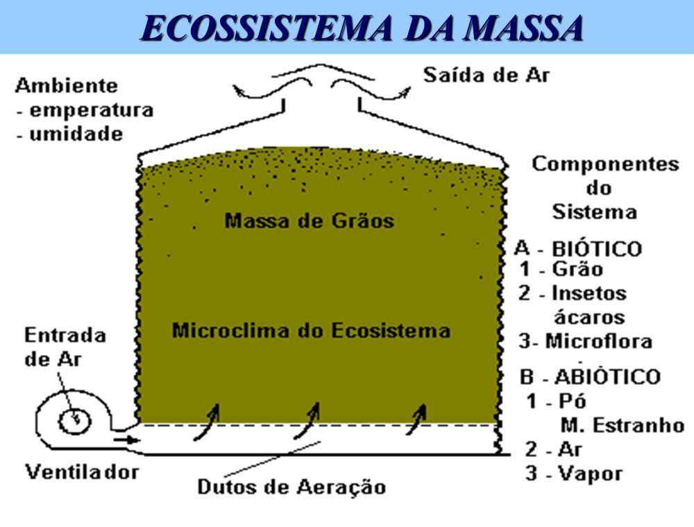BENEFÍCIOS DA AERAÇÃO n Remove odores - Inseticidas -Devolve o cheiro característico dos grãos - Função da atividade biológica Õ Respiração Õ Desenvol