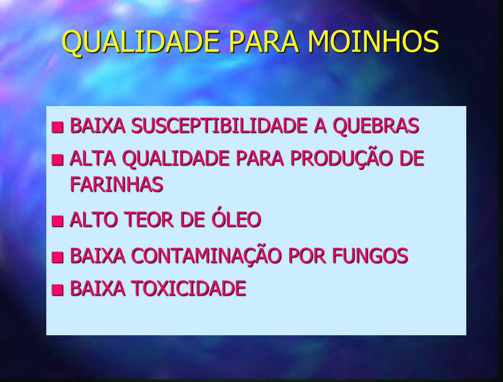 QUALIDADE PARA EXPORTAÇÃO F BAIXA SUSCEPTIBILIDADE A QUEBRAS F ALTA % DE GERMINAÇÃO F BAIXA TOXICIDADE F BAIXA % DE DANOS POR INSETOS