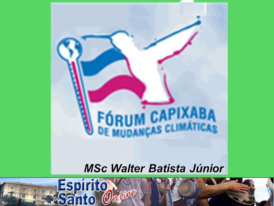 MSc Walter Batista Júnior