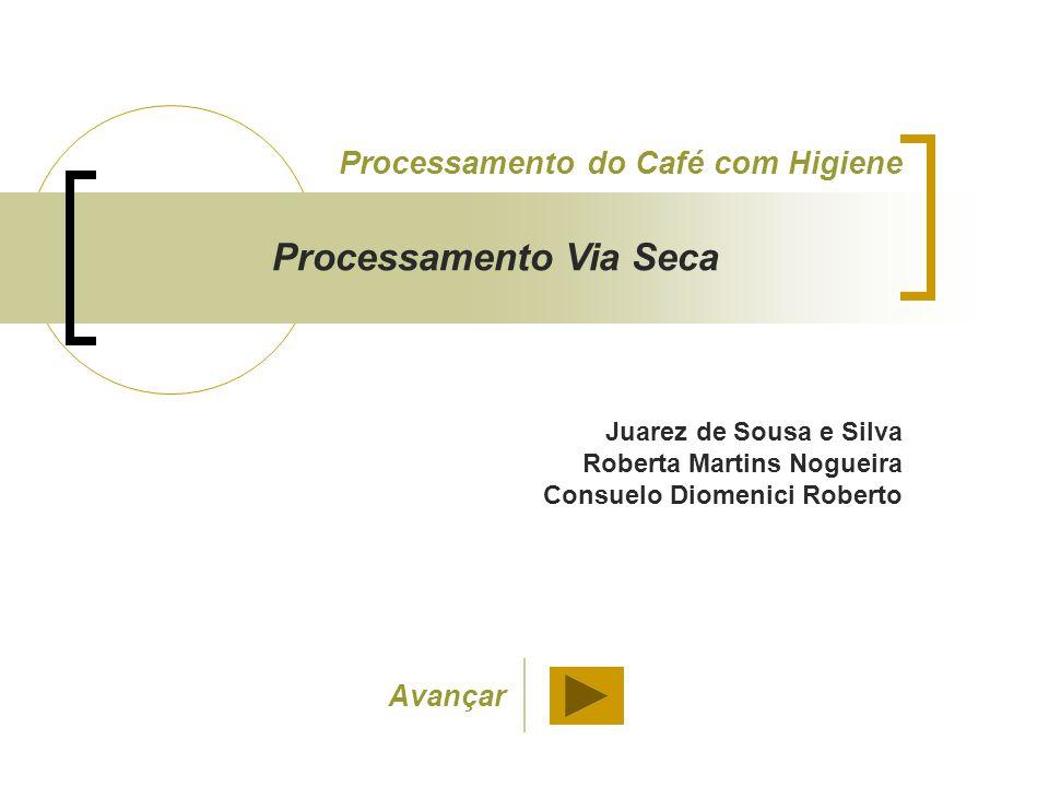 Juarez de Sousa e Silva Roberta Martins Nogueira Consuelo Diomenici Roberto Processamento do Café com Higiene Processamento Via Seca Avançar