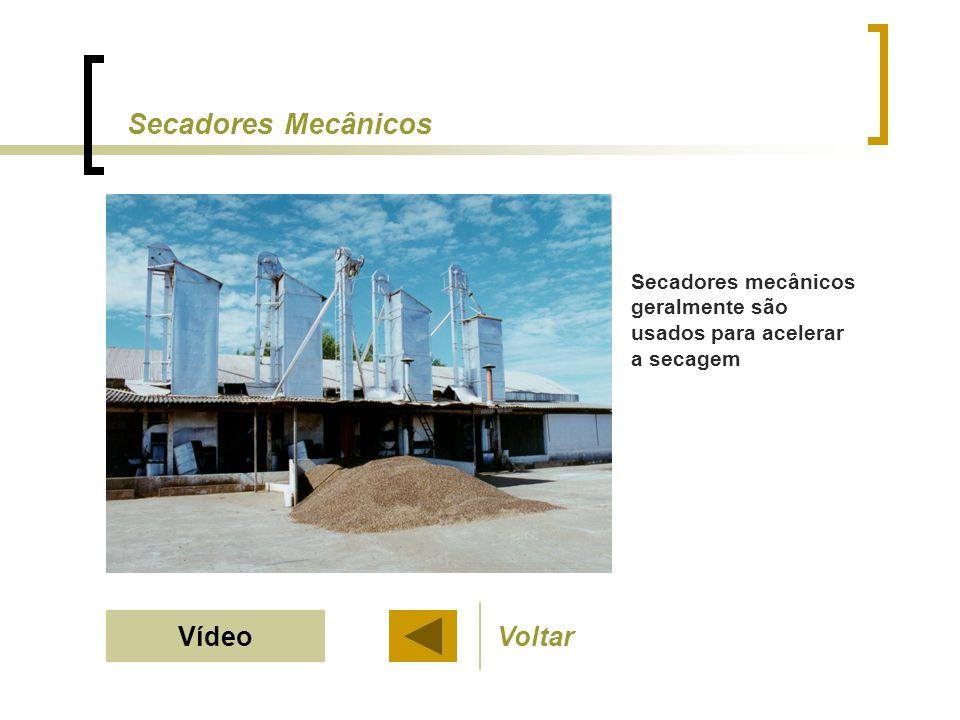 Secadores mecânicos geralmente são usados para acelerar a secagem Secadores Mecânicos VoltarVídeo