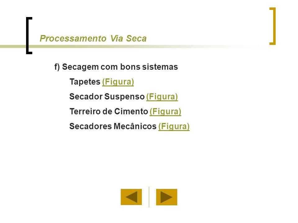 f) Secagem com bons sistemas Tapetes (Figura)(Figura) Secador Suspenso (Figura)(Figura) Terreiro de Cimento (Figura)(Figura) Secadores Mecânicos (Figu