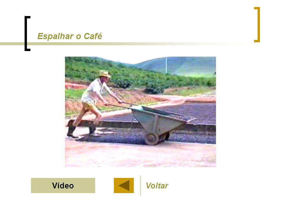 Espalhar o Café VoltarVídeo