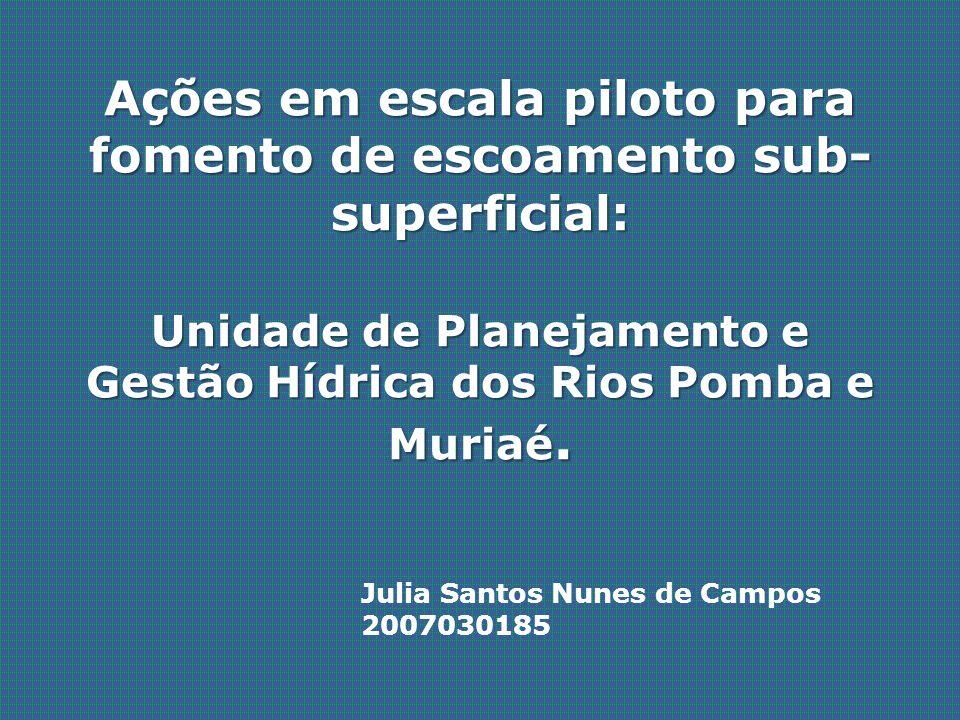 Ações em escala piloto para fomento de escoamento sub- superficial: Unidade de Planejamento e Gestão Hídrica dos Rios Pomba e Muriaé. Julia Santos Nun