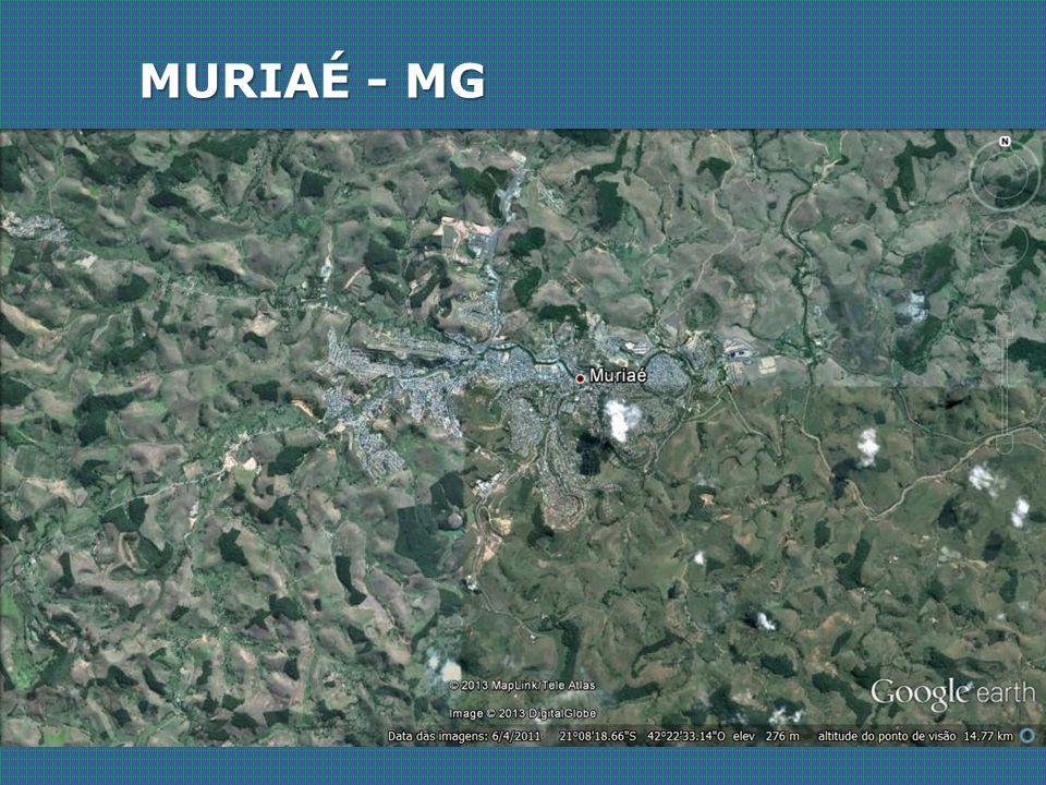 MURIAÉ - MG