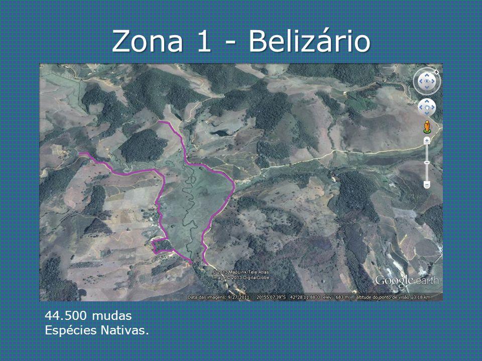 Zona 2 - Vermelho 31.200 mudas. Espécies Nativas + Albizia Lebbek + Capim jaraguá.