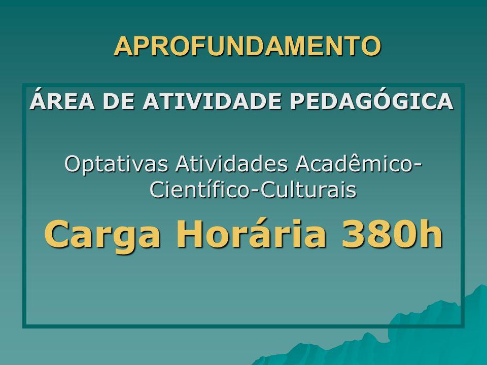 APROFUNDAMENTO APROFUNDAMENTO ÁREA DE ATIVIDADE PEDAGÓGICA Optativas Atividades Acadêmico- Científico-Culturais Carga Horária 380h