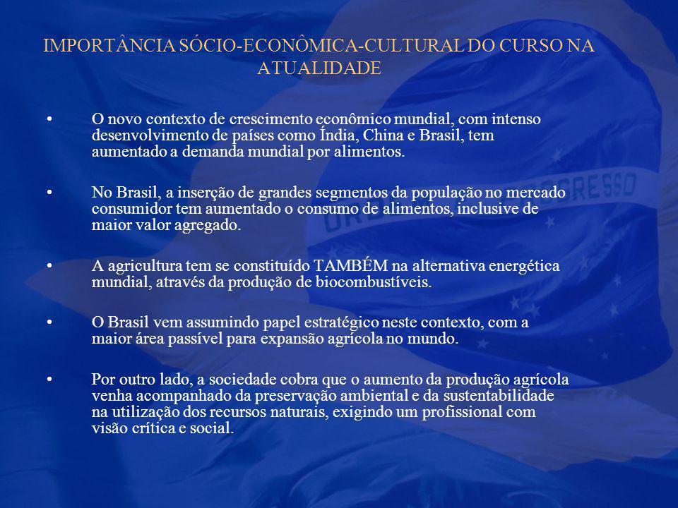 IMPORTÂNCIA SÓCIO-ECONÔMICA-CULTURAL DO CURSO NA ATUALIDADE O novo contexto de crescimento econômico mundial, com intenso desenvolvimento de países co