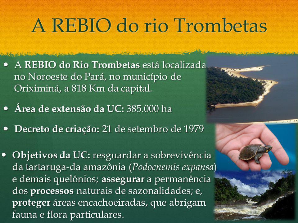 A REBIO do rio Trombetas A REBIO do Rio Trombetas está localizada no Noroeste do Pará, no município de Oriximiná, a 818 Km da capital. A REBIO do Rio