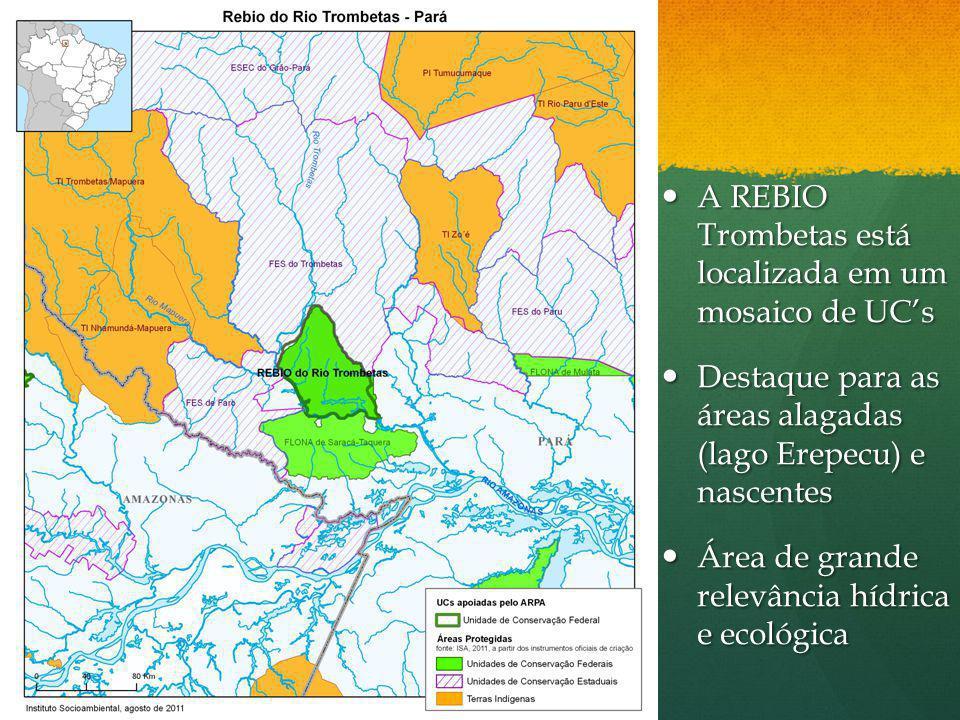 A REBIO Trombetas está localizada em um mosaico de UCs A REBIO Trombetas está localizada em um mosaico de UCs Destaque para as áreas alagadas (lago Er