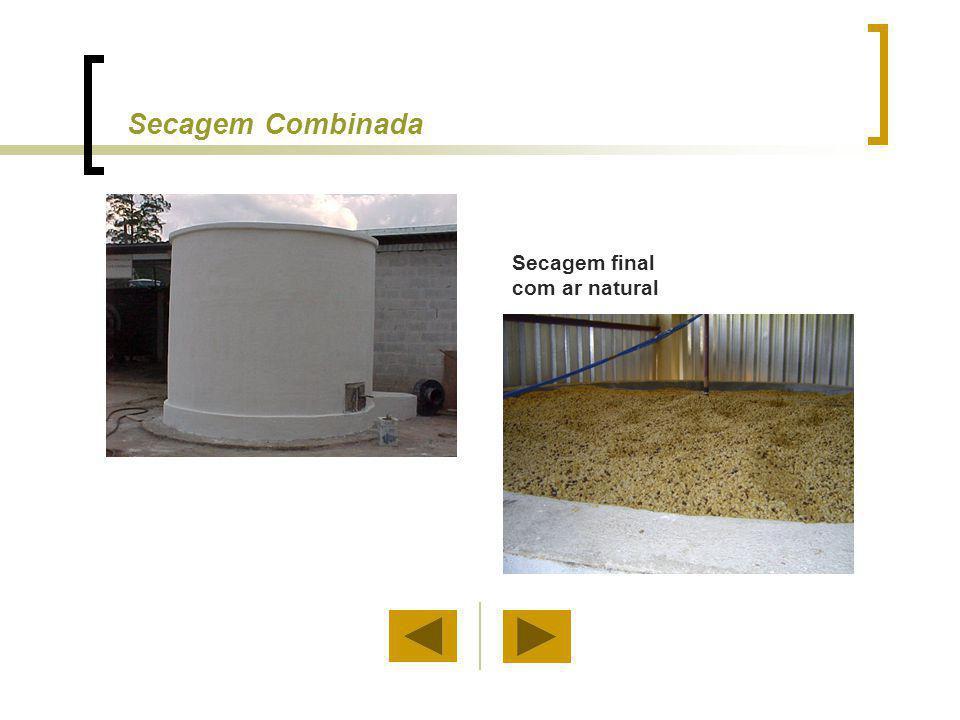Condições de Colheita e Secagem (Exemplo) Colheita, dias48Fluxo de ar, m 3 min -1 t -1 5 Número de silos6 Aquecimento do ventilador, C 1 Número de camadas8 Ar de secagem, C 23,0 Diâmetro do silo, m3UR do ar de secagem, %66 Altura do silo, m3,2Teor de umidade final, %11,6 Altura da camada, m0,4Tempo de secagem (camadas), h168 Ar ambiente, C 22Potência do ventilador, cv1 UR do ambiente, %70