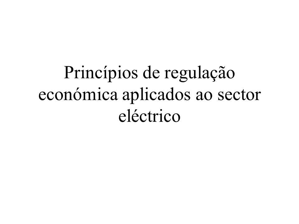 Princípios de regulação económica aplicados ao sector eléctrico