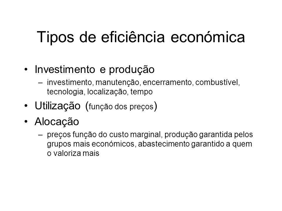 Tipos de eficiência económica Investimento e produção –investimento, manutenção, encerramento, combustível, tecnologia, localização, tempo Utilização