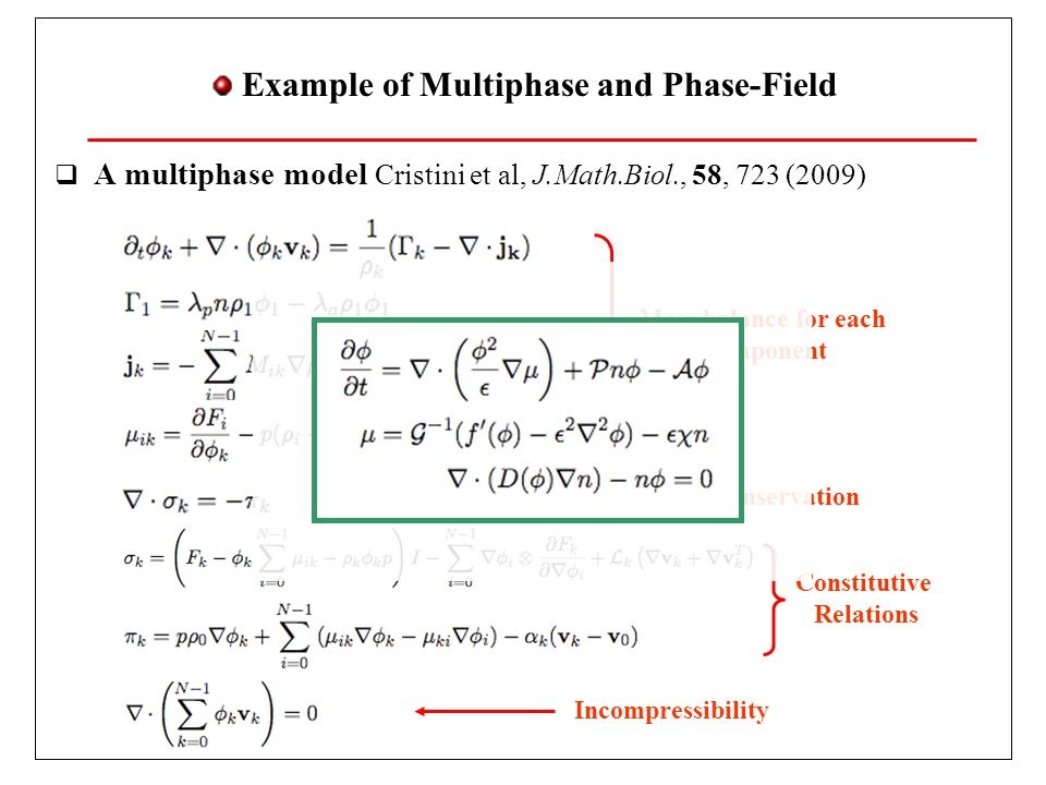 Example of Multiphase and Phase-Field A multiphase model Cristini et al, J.Math.Biol., 58, 723 (2009) Mass balance for each component Incompressibility Momentum conservation Constitutive Relations