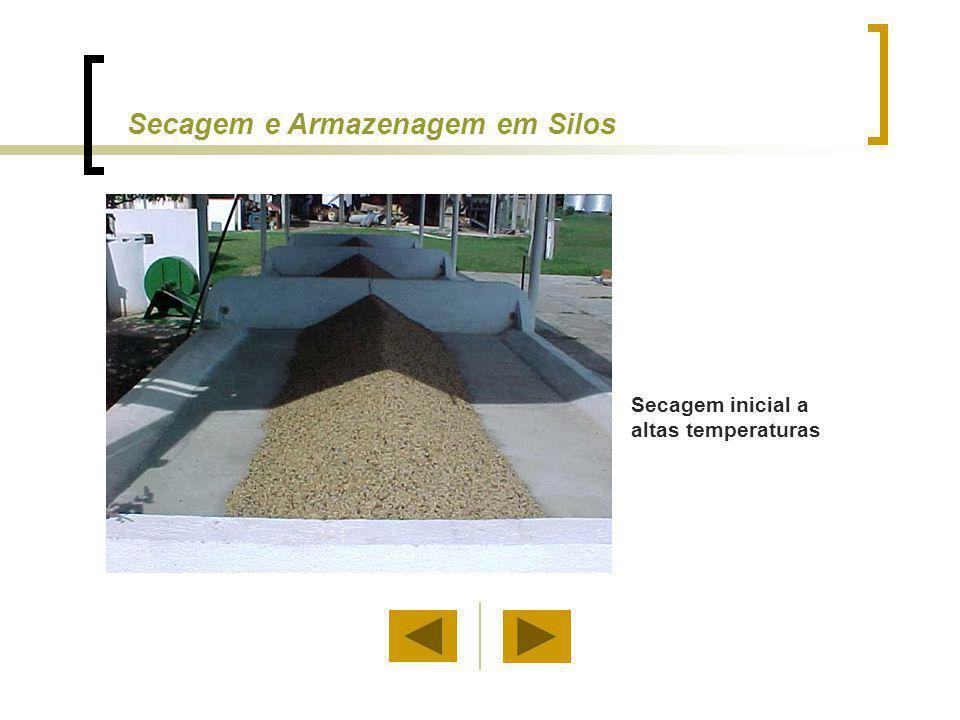 Secagem inicial a altas temperaturas Secagem e Armazenagem em Silos