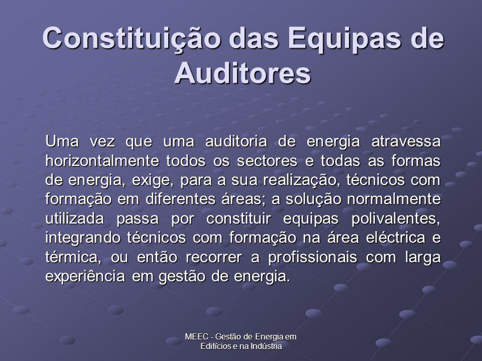 MEEC - Gestão de Energia em Edifícios e na Indústria Constituição das Equipas de Auditores Uma vez que uma auditoria de energia atravessa horizontalme