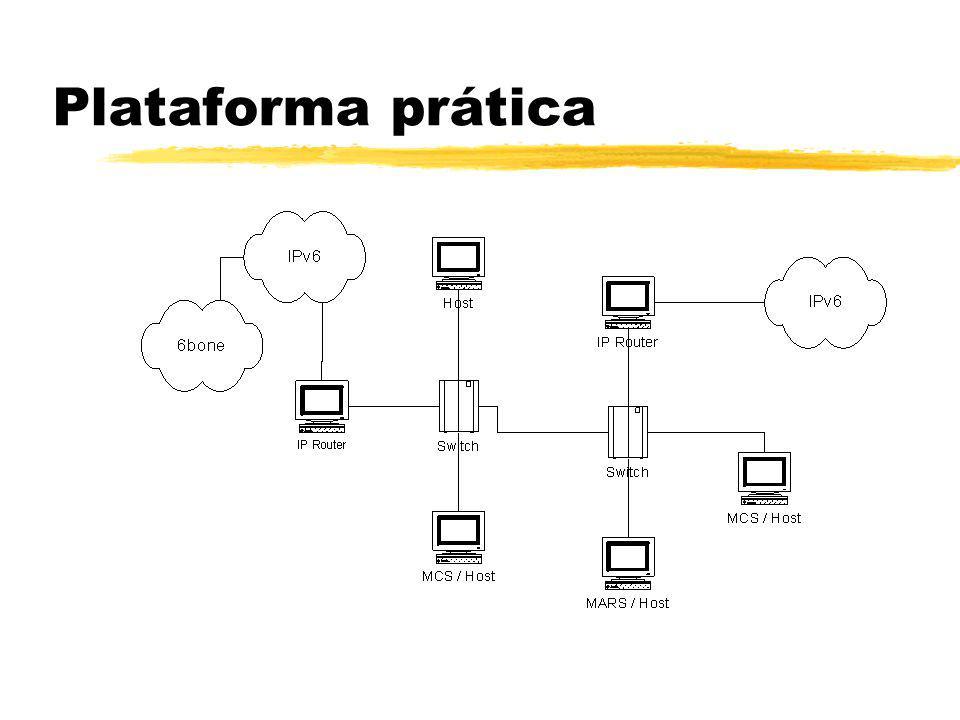Plataforma prática