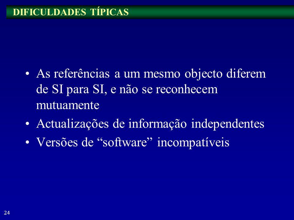 23 Exemplo 4: Avaliação do desempenho –ID de recursos naturais: dados operacionais –ID de recursos humanos: SI de pessoal –ID de infra-estruturas físi