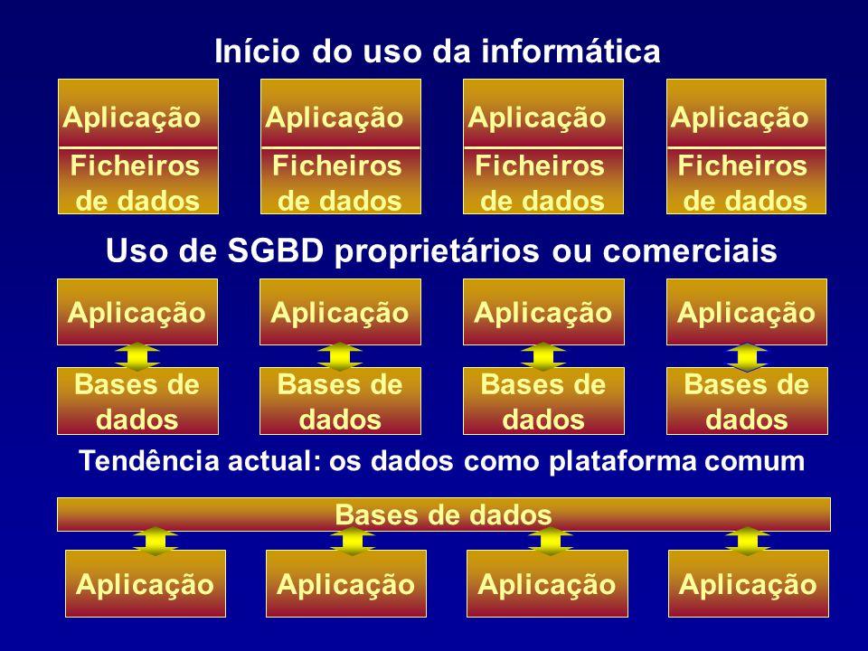 24 As referências a um mesmo objecto diferem de SI para SI, e não se reconhecem mutuamente Actualizações de informação independentes Versões de softwa